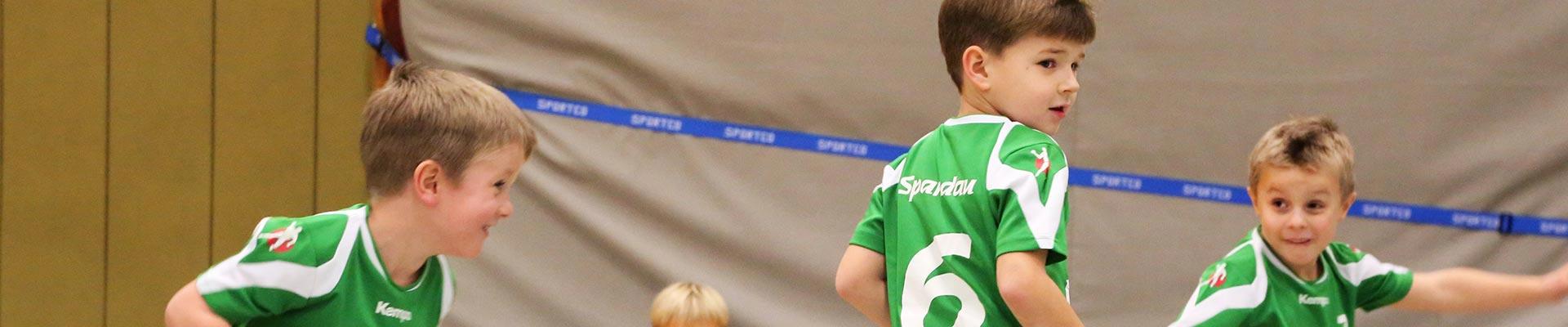 Vfv Spandau Handball